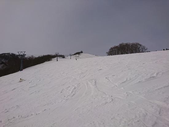 岩原スキー場のフォトギャラリー6