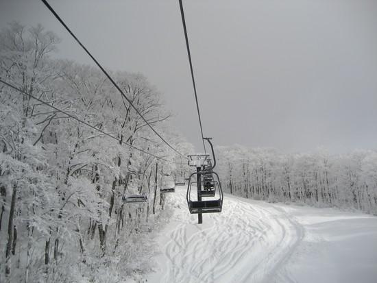 雪が良い!|阿仁スキー場のクチコミ画像