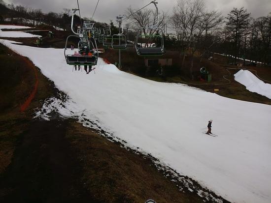 12月25日の雪不足の様子|軽井沢プリンスホテルスキー場のクチコミ画像