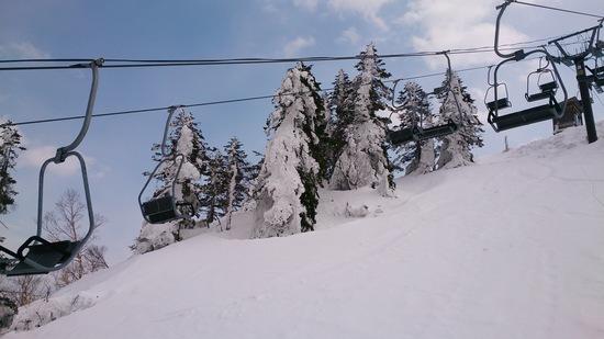 四月なのにまだまだこれから!|志賀高原 熊の湯スキー場のクチコミ画像3