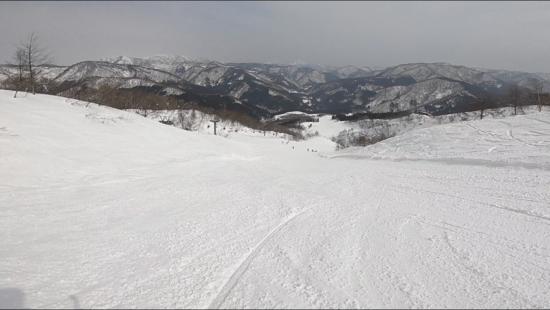 大好きなスキー場|福井和泉スキー場のクチコミ画像