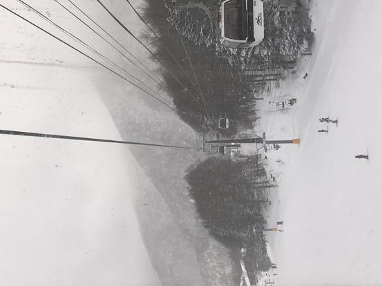 雪質最高!|丸沼高原スキー場のクチコミ画像