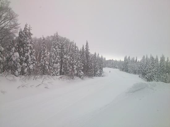 積雪ばっちり|阿仁スキー場のクチコミ画像
