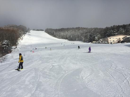 今年は雪少ない|菅平高原スノーリゾートのクチコミ画像2