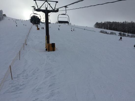 今年は雪少ない|菅平高原スノーリゾートのクチコミ画像3