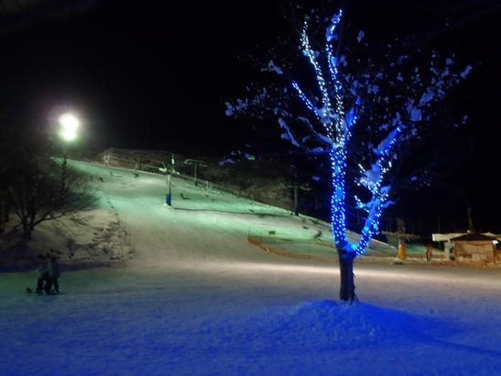 ライトアップ|岩原スキー場のクチコミ画像
