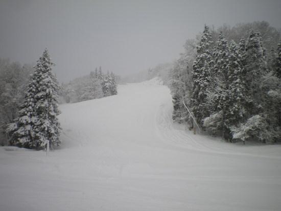前日の大雪|白馬八方尾根スキー場のクチコミ画像