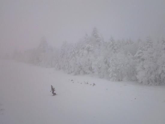 仙台から、初めての嬬恋|パルコールつま恋スキーリゾートのクチコミ画像3