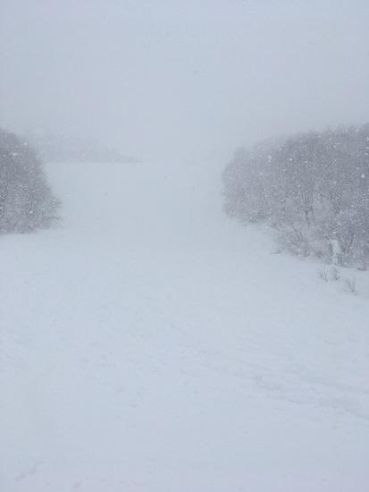 新雪|湯沢中里スノーリゾートのクチコミ画像