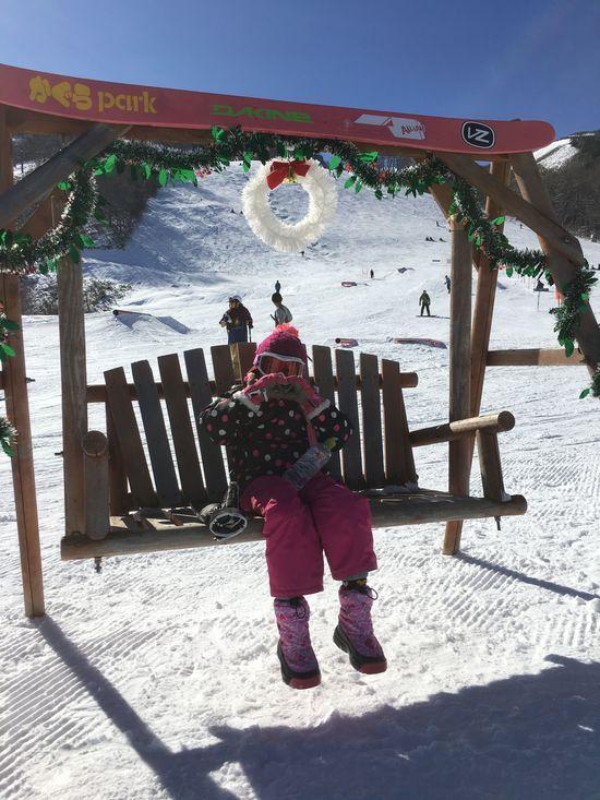 20年ぶりのかぐら|かぐらスキー場のクチコミ画像