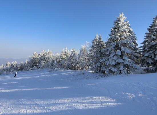 雪山は奇麗|パルコールつま恋スキーリゾートのクチコミ画像