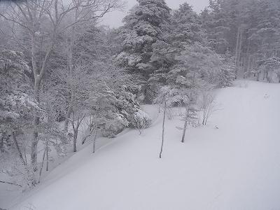 冬予再び|信州松本 野麦峠スキー場のクチコミ画像