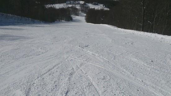 クリスマス一人スキー|ホワイトワールド尾瀬岩鞍のクチコミ画像