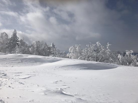 横手山  パウダースノー‼️|志賀高原リゾート中央エリア(サンバレー〜一の瀬)のクチコミ画像