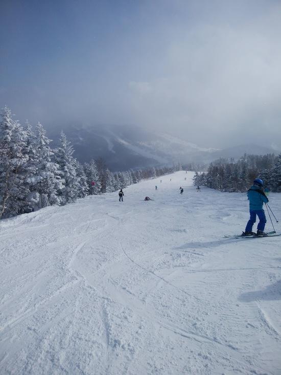 志賀高原 焼額山スキー場のフォトギャラリー5