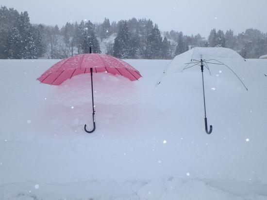 透明人間|シャルマン火打スキー場のクチコミ画像