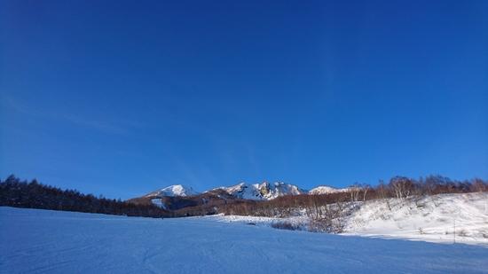 豪雪の合間に1日だけ晴天|妙高杉ノ原スキー場のクチコミ画像