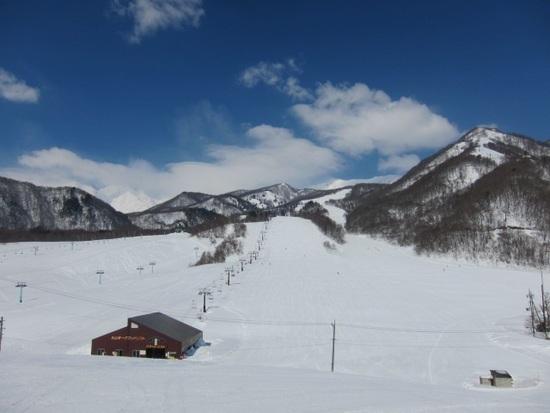 ひっ、広い・・・|栂池高原スキー場のクチコミ画像