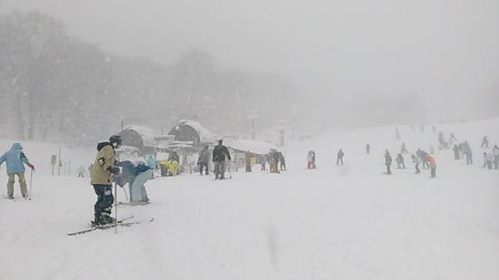 首都圏最近のパウダー|たんばらスキーパークのクチコミ画像