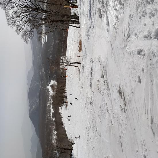 たんばらスキーパークのフォトギャラリー1