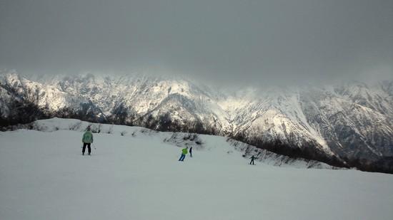 白馬五竜11月に天然雪