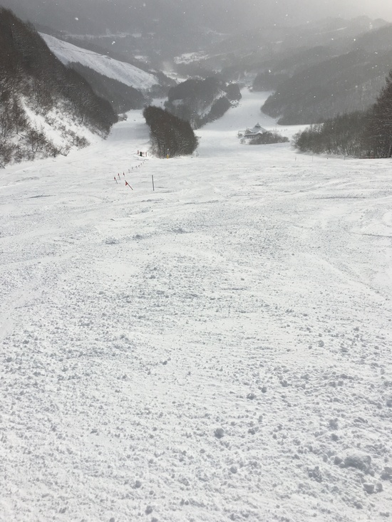 今季初のホームゲレンデ|ホワイトワールド尾瀬岩鞍のクチコミ画像