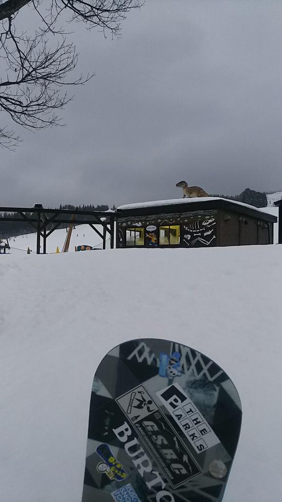 雲海が見れる絶景ロングコースゲレンデ♪ スキージャム勝山のクチコミ画像2