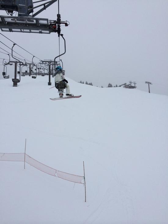 大雪でパウダーありました|箱館山スキー場のクチコミ画像