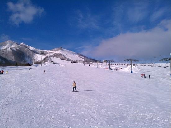 初心者でも滑りやすい|岩原スキー場のクチコミ画像
