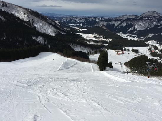 初滑り|立山山麓スキー場のクチコミ画像
