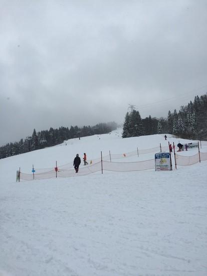 雪質よかった|かぐらスキー場のクチコミ画像