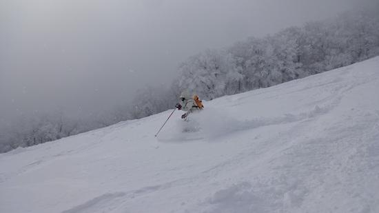 13年ぶり|斑尾高原スキー場のクチコミ画像