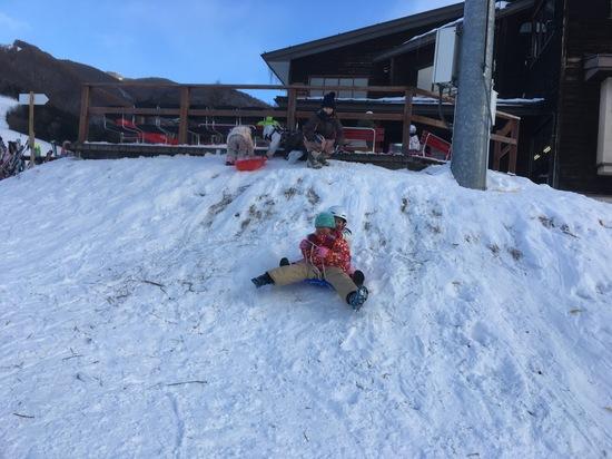小学生スキー初心者、保育園児そり遊び|信州松本 野麦峠スキー場のクチコミ画像