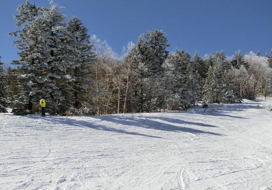 標高の高さで積雪あり|パルコールつま恋スキーリゾートのクチコミ画像