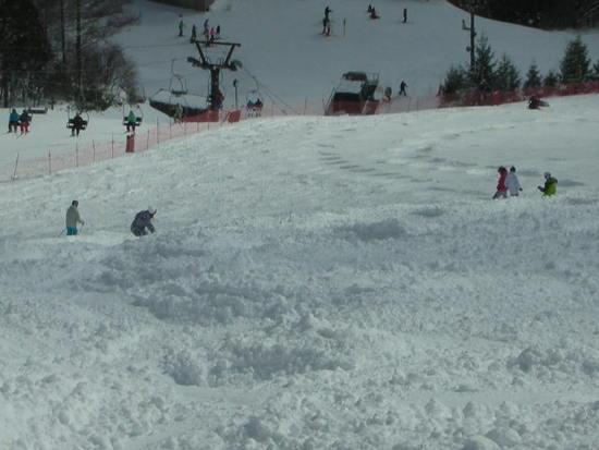 ミニコブあり|猪苗代スキー場[中央×ミネロ]のクチコミ画像2