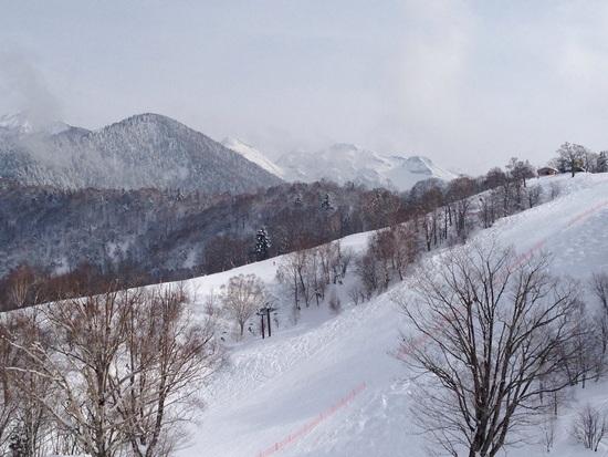 マウントコース上部 飛騨ほおのき平スキー場のクチコミ画像