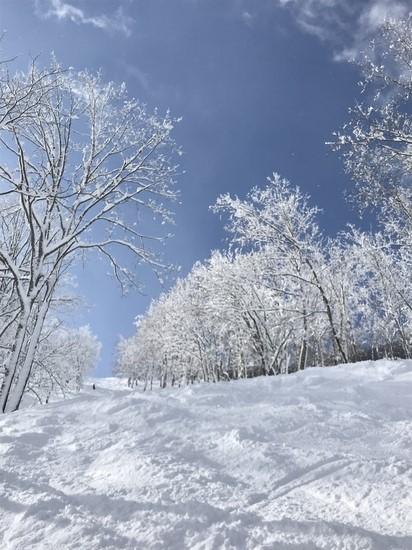 パウダー天国|タングラムスキーサーカスのクチコミ画像
