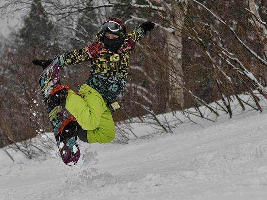 最高の雪質 ハチ・ハチ北スキー場のクチコミ画像2