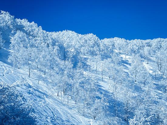 吸い込まれる〜 斑尾高原スキー場のクチコミ画像2