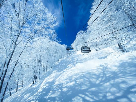 吸い込まれる〜 斑尾高原スキー場のクチコミ画像3