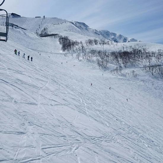 これ以上ない幸せ|白馬八方尾根スキー場のクチコミ画像