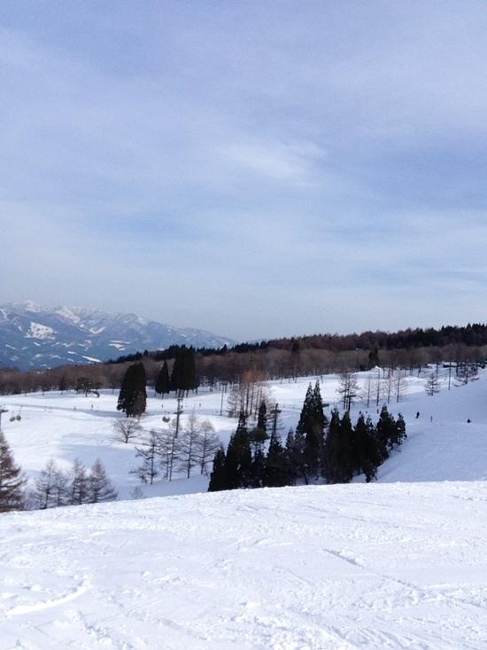 安く滑れるファミリーゲレンデ|スノーウェーブパーク白鳥高原のクチコミ画像