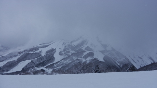 温泉がいい景色もいい|白馬岩岳スノーフィールドのクチコミ画像