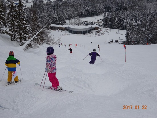 モーグルコース、全てオープン|白馬さのさかスキー場のクチコミ画像2