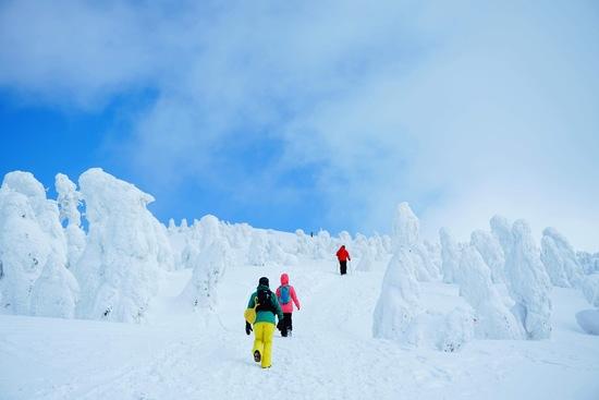 樹氷に息を呑む|阿仁スキー場のクチコミ画像1