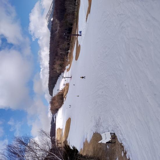 白樺高原国際スキー場のフォトギャラリー1