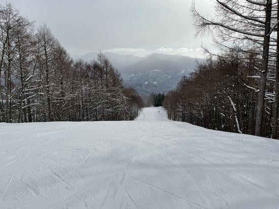 ワンダーランドかたしなレビューキャンペーン かたしな高原スキー場のクチコミ画像