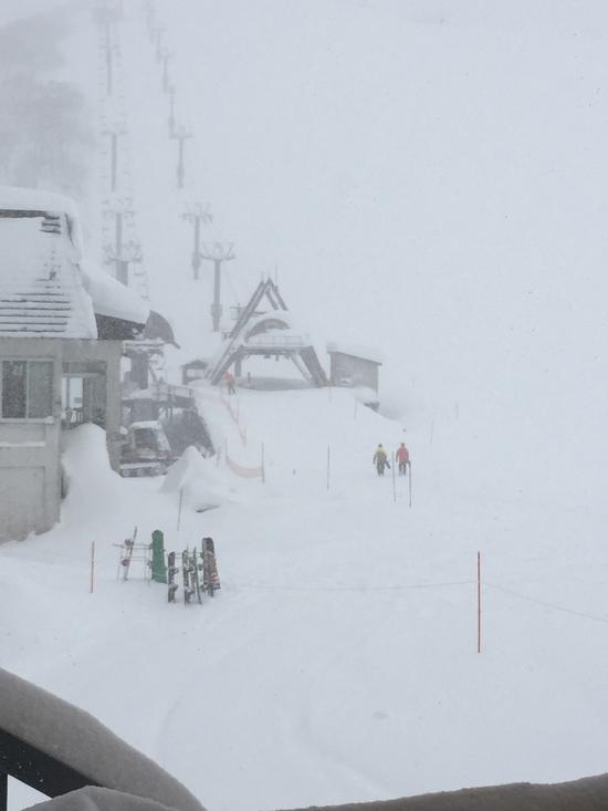シーズンインはパウダー天国|谷川岳天神平スキー場のクチコミ画像