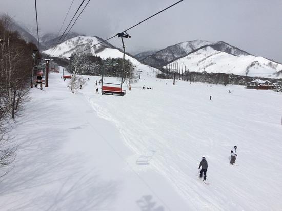 ファミリー向け|栂池高原スキー場のクチコミ画像