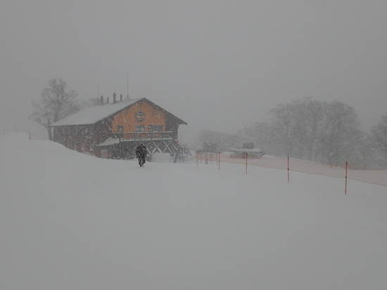 久々の豪雪|かぐらスキー場のクチコミ画像